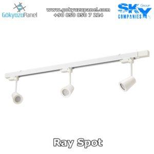 Ray Spot