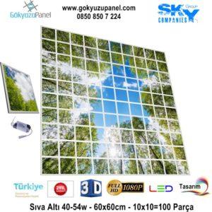 60x60 Gökyüzü Panel 10x10