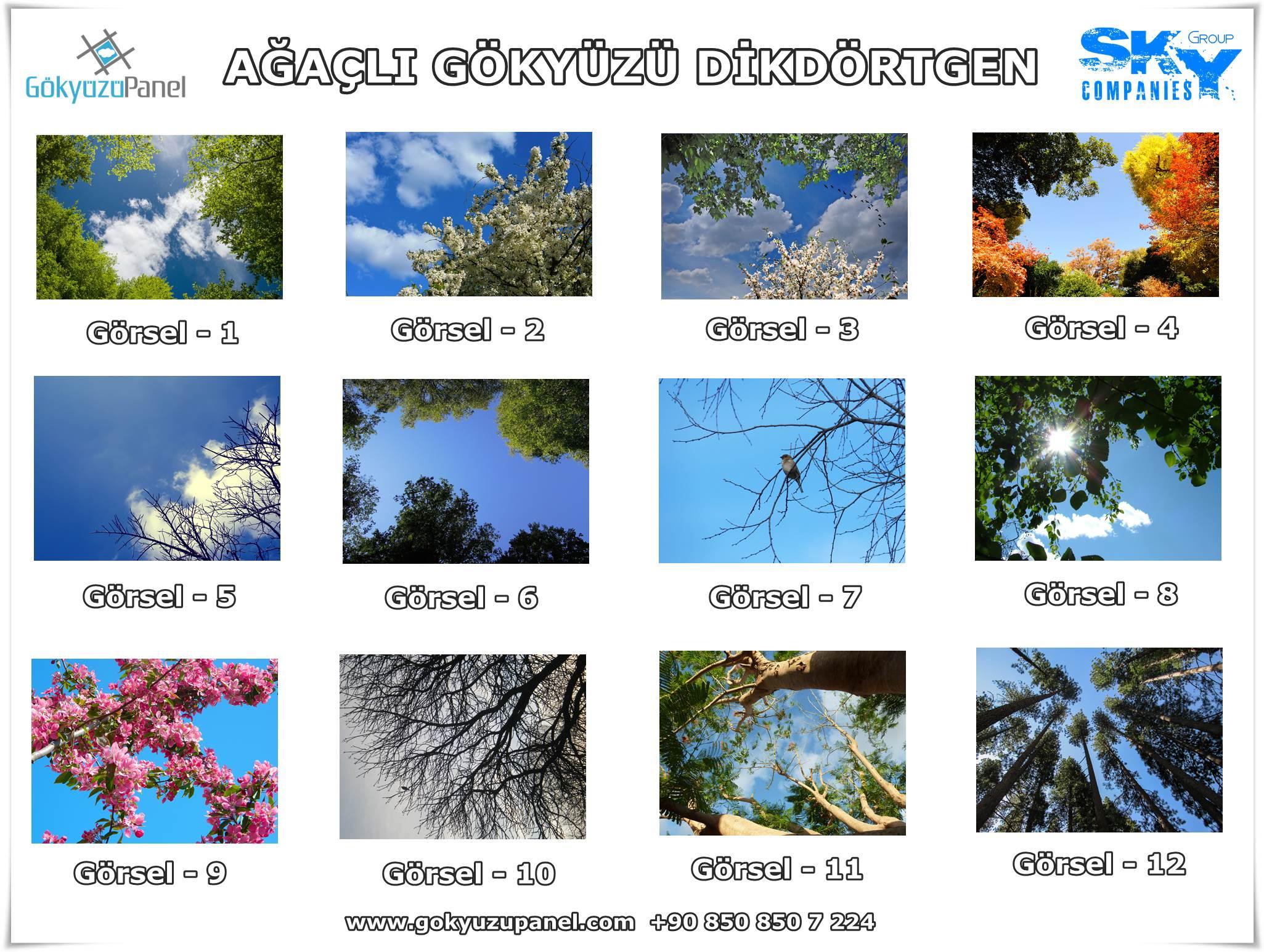 Ağaçlı Gökyüzü Dikdörtgen