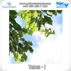 Ağaçlı Gökyüzü Tema - 1