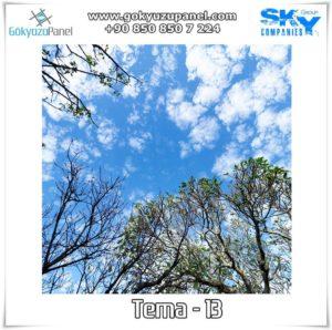 Ağaçlı Gökyüzü Tema - 13