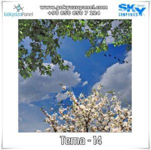 Ağaçlı Gökyüzü Tema - 14