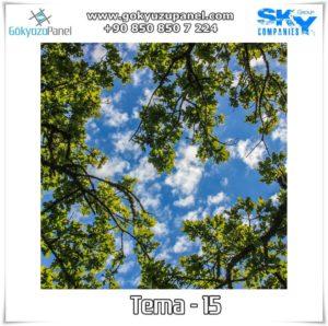 Ağaçlı Gökyüzü Tema - 15