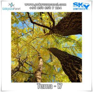 Ağaçlı Gökyüzü Tema - 17