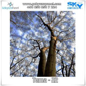 Ağaçlı Gökyüzü Tema - 22