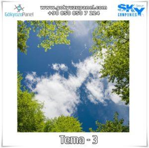 Ağaçlı Gökyüzü Tema - 3