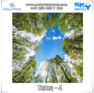 Ağaçlı Gökyüzü Tema - 4