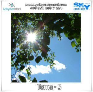Ağaçlı Gökyüzü Tema - 5
