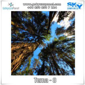 Ağaçlı Gökyüzü Tema - 8
