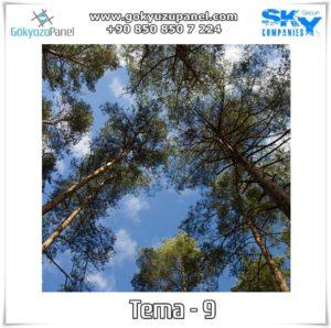 Ağaçlı Gökyüzü Tema - 9