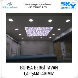 Bursa Gergi Tavan 1
