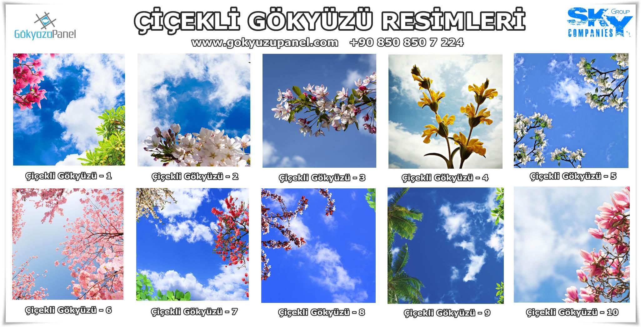 Çiçekli Gökyüzü