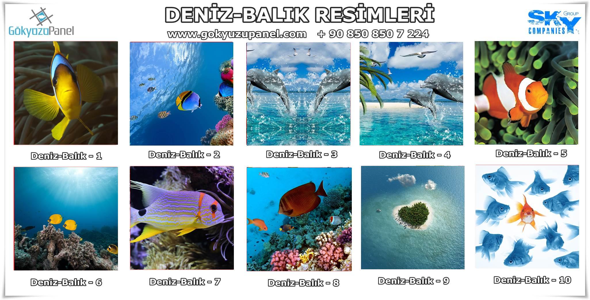 Deniz Balık