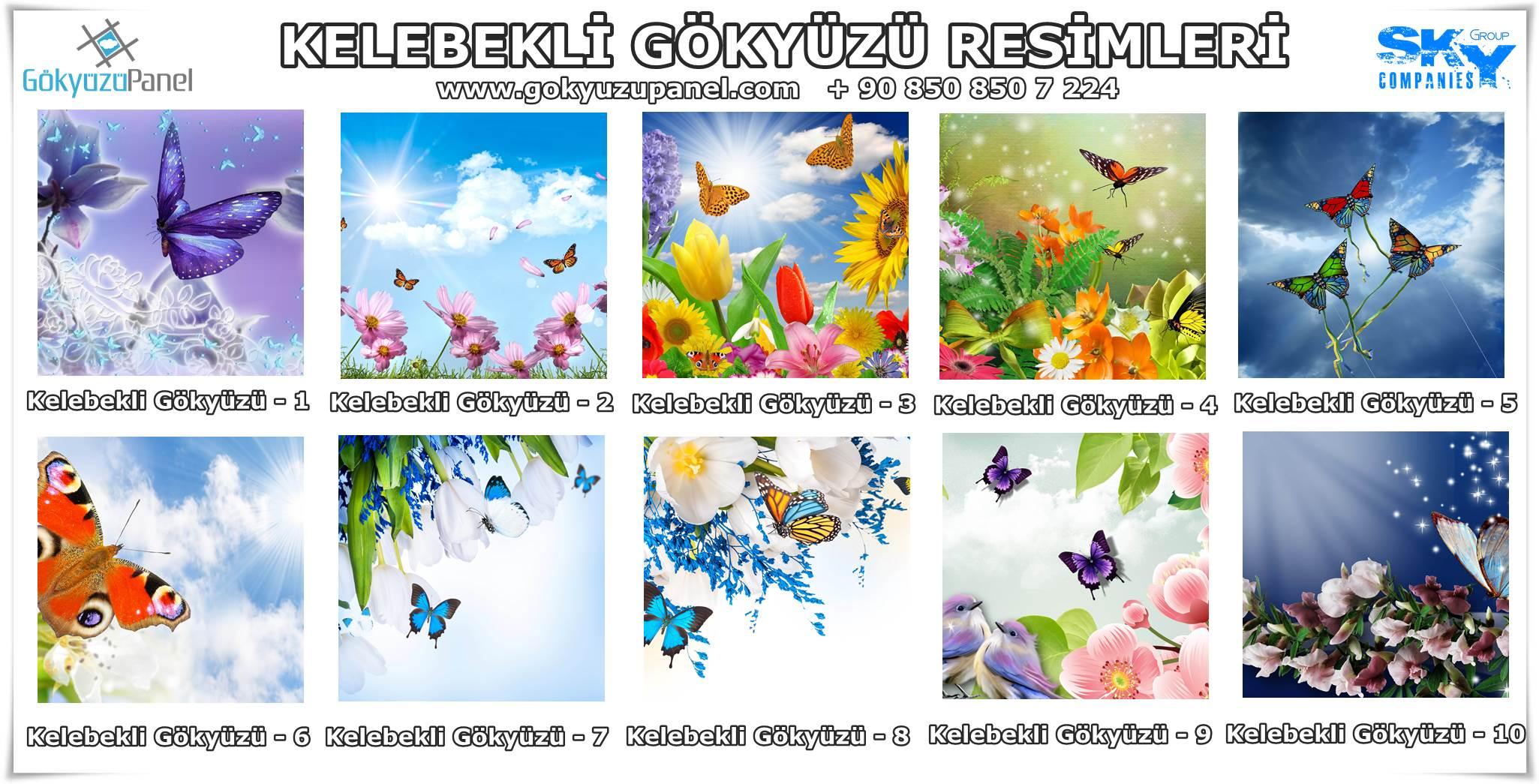 Kelebekli Gökyüzü