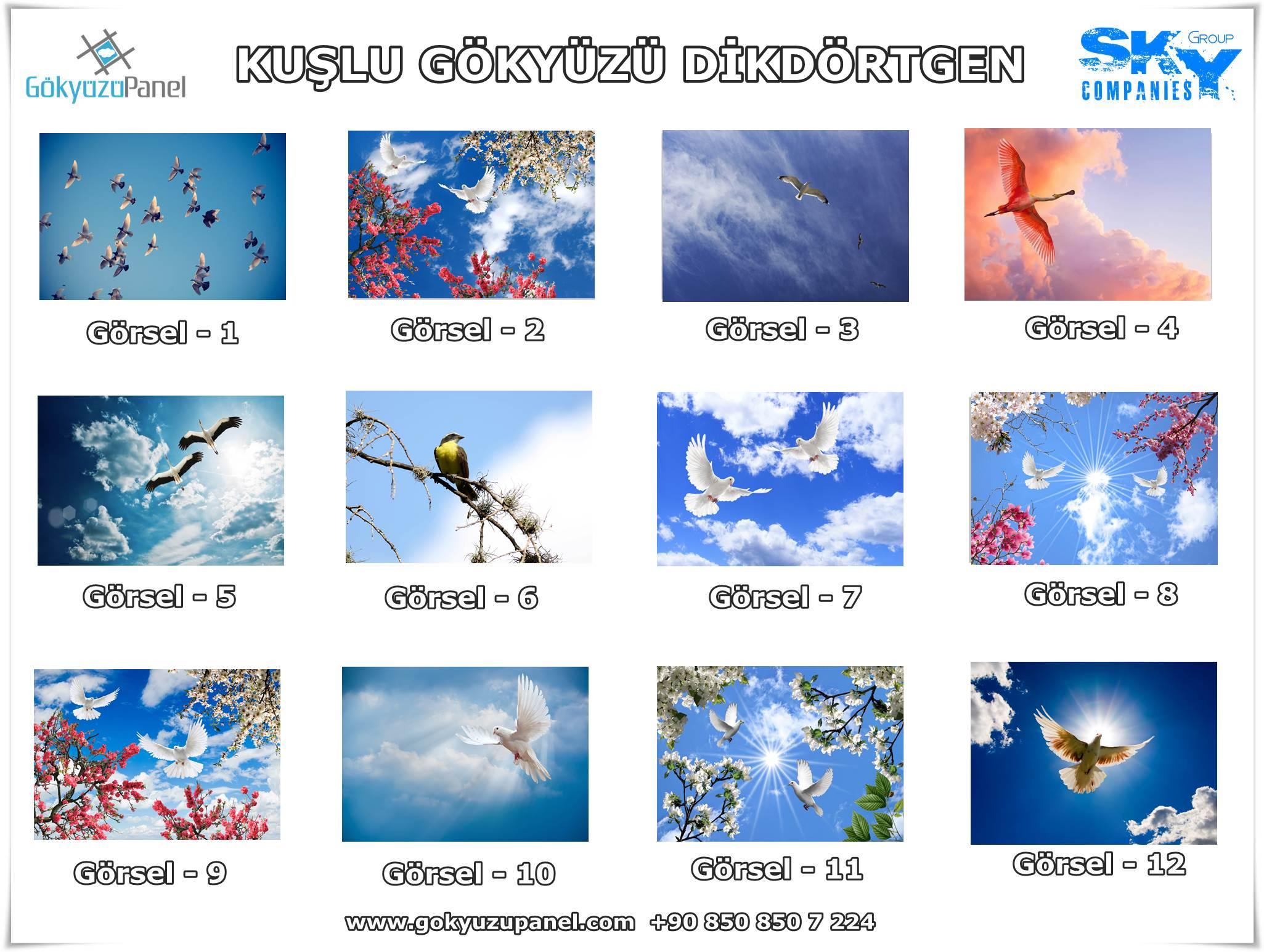 Kuşlu Gökyüzü Dikdörtgen